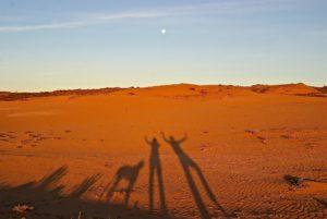 Marokko mit Hund und Vollmond
