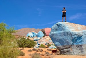 Mit Hund bei den Painted Rocks in Tafraoute