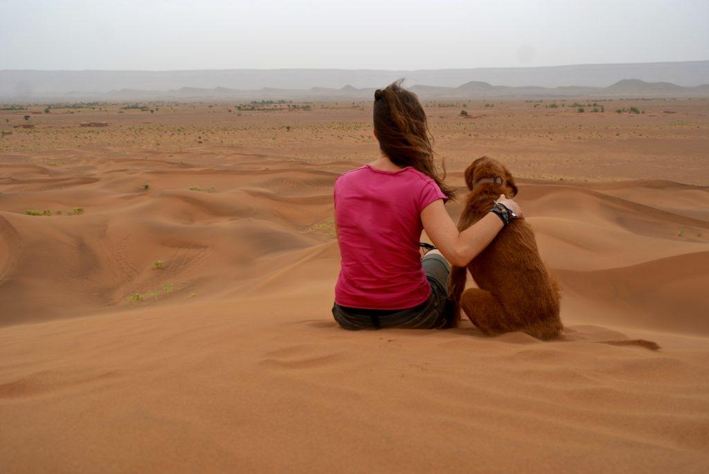 Marokko mit Hund an den Dunes de Tinfou