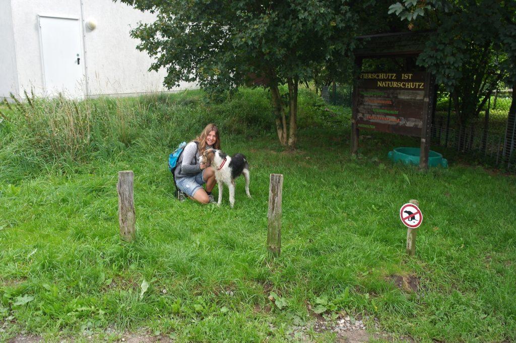 Carolin Hlawatsch besucht die Jagdhunde im Tierheim Lübeck