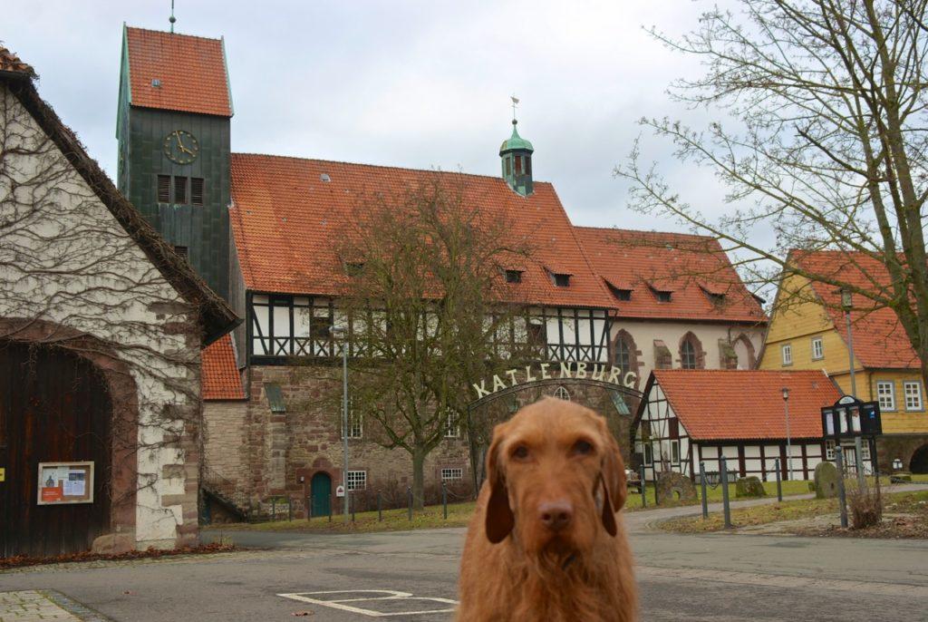 Mit Hund zur Katlenburg