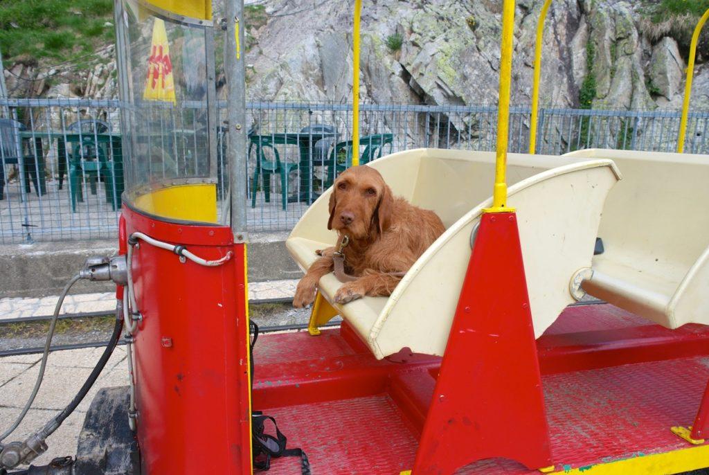 Yeti nimmt Platz - Fahrt in die Pyrenäen