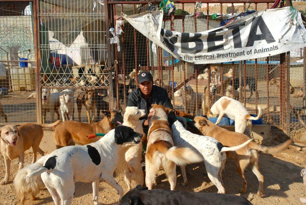 Tierpfleger Kumar mit Hunden vor der Auffangstation