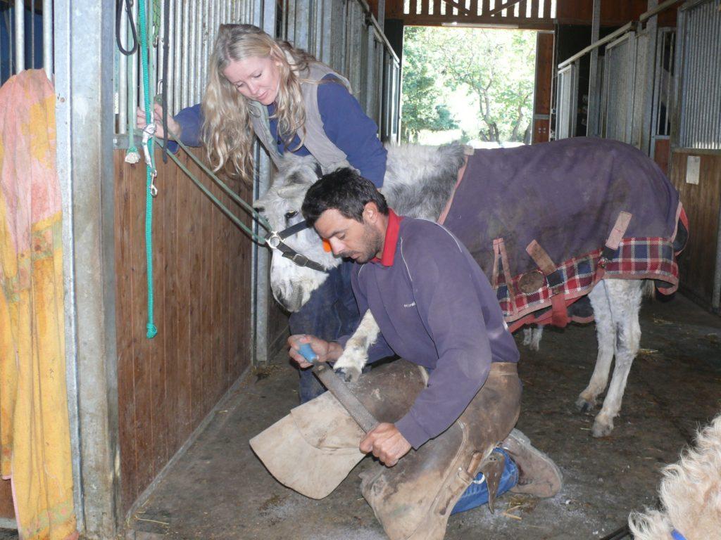 Hufschmied in der Esel-Auffangstation auf Korfu
