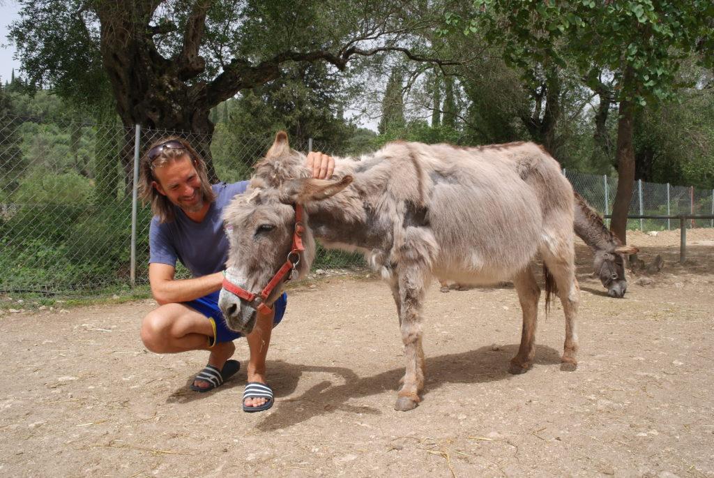 Besucher in der Esel-Auffangstation