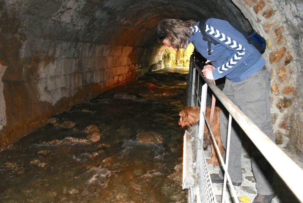 unteririscher Kanal von Cazorla