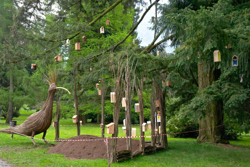 Komischer Vogel im Kurpark Levico Terme