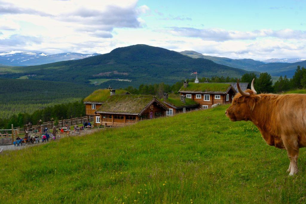Aussicht von Glittersjå Fjellgard