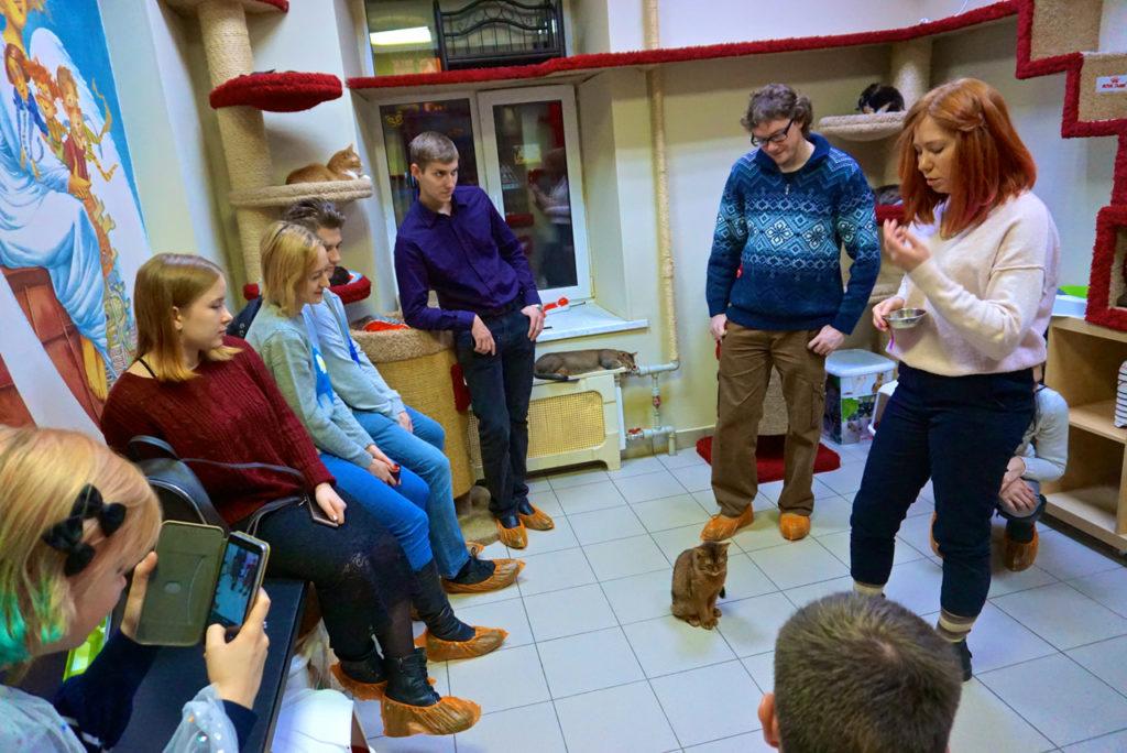 Mitarbeiterin gibt Infos zu den Katzen in der Cats Republic St. Petersburg