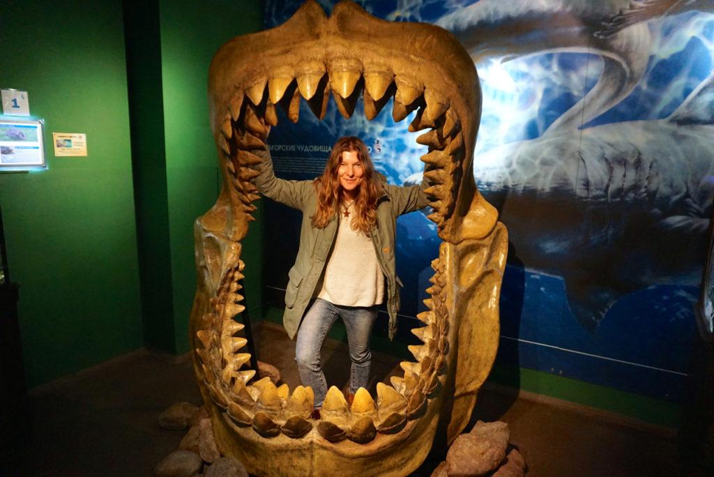 Haisgebiss im Ozeanarium