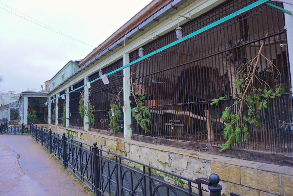 Tiere in St. Petersburg - der Zoo