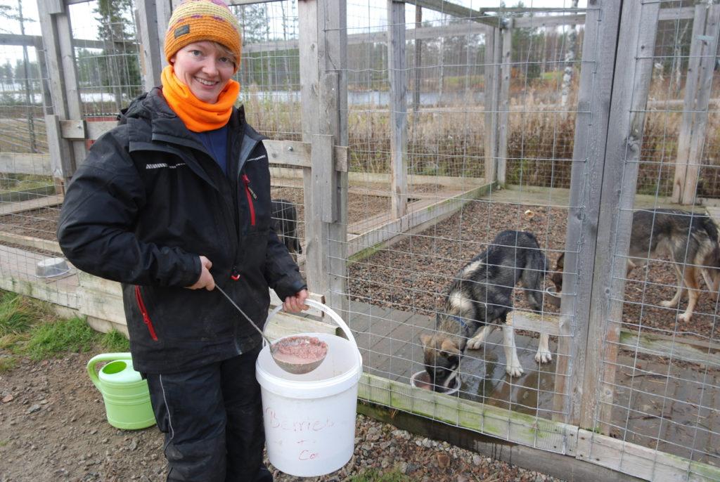 Katharina füttert die Huskies