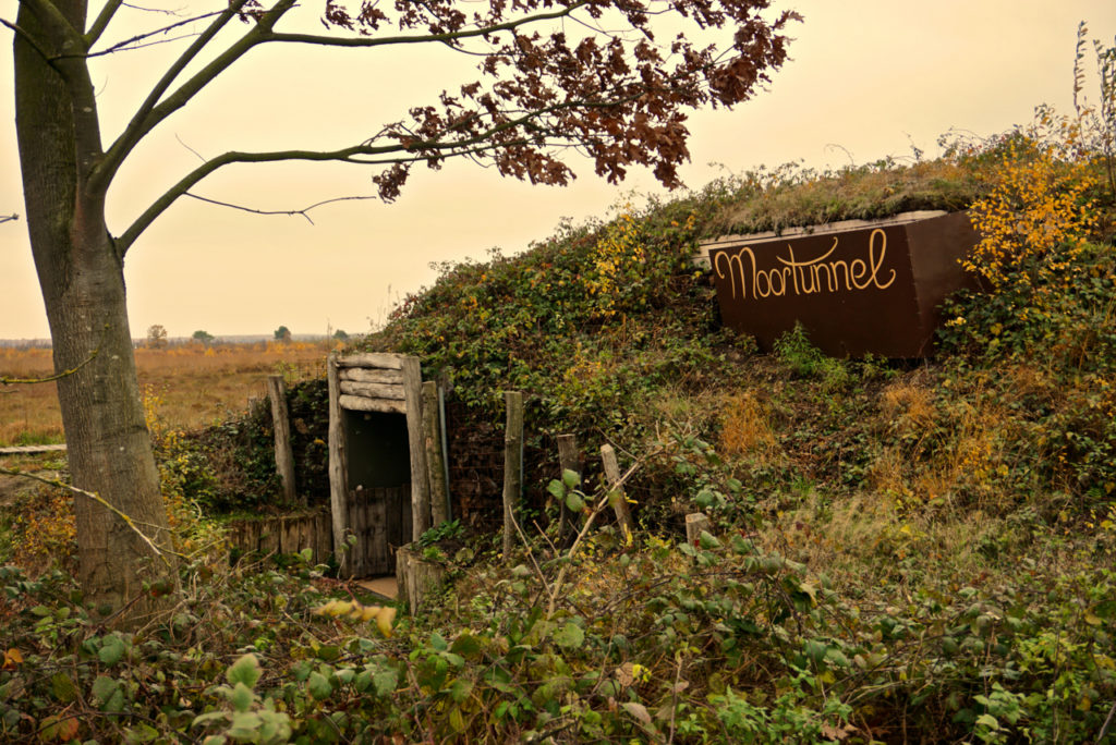 Moortunnel im Goldenstedter Moor