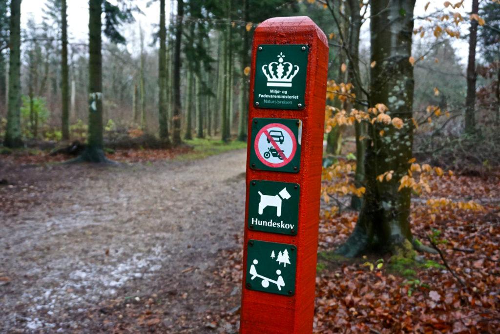 Einganh Hundewald Dänemark