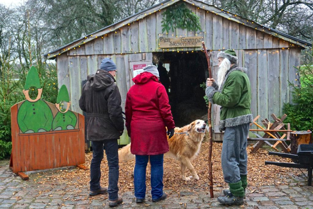 Dänemark mit Hund:Hund trifft Weihnachtself in Dänemark