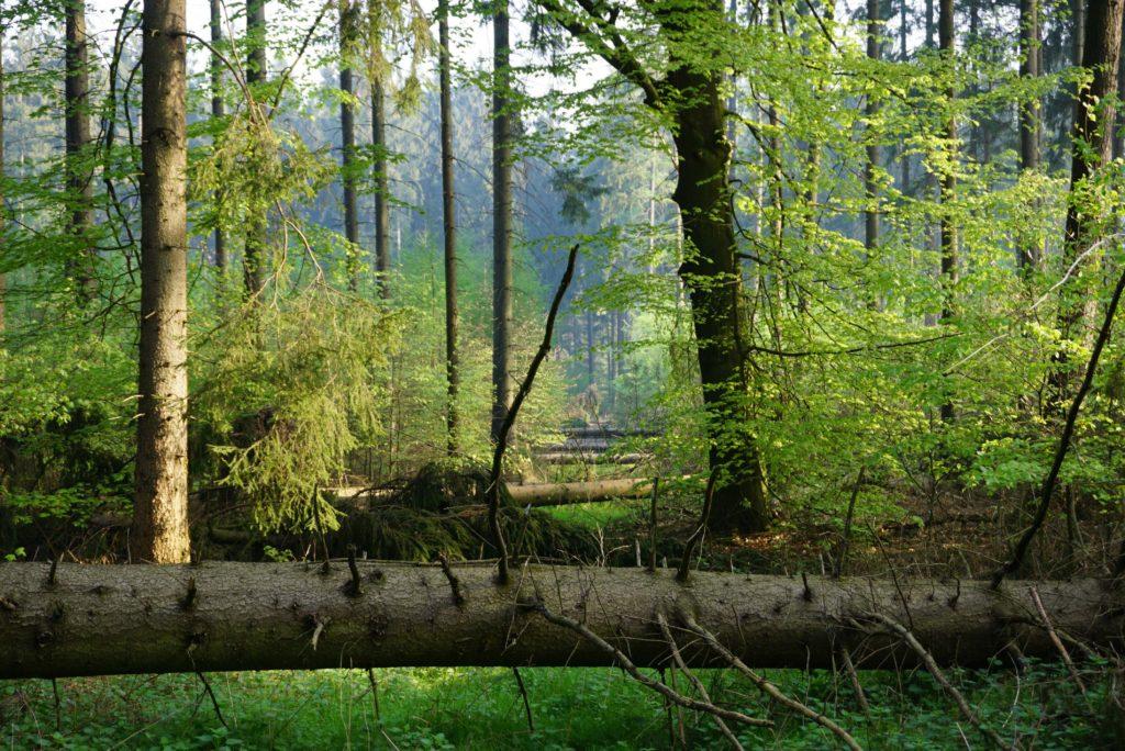 Naturpark Terra.vita