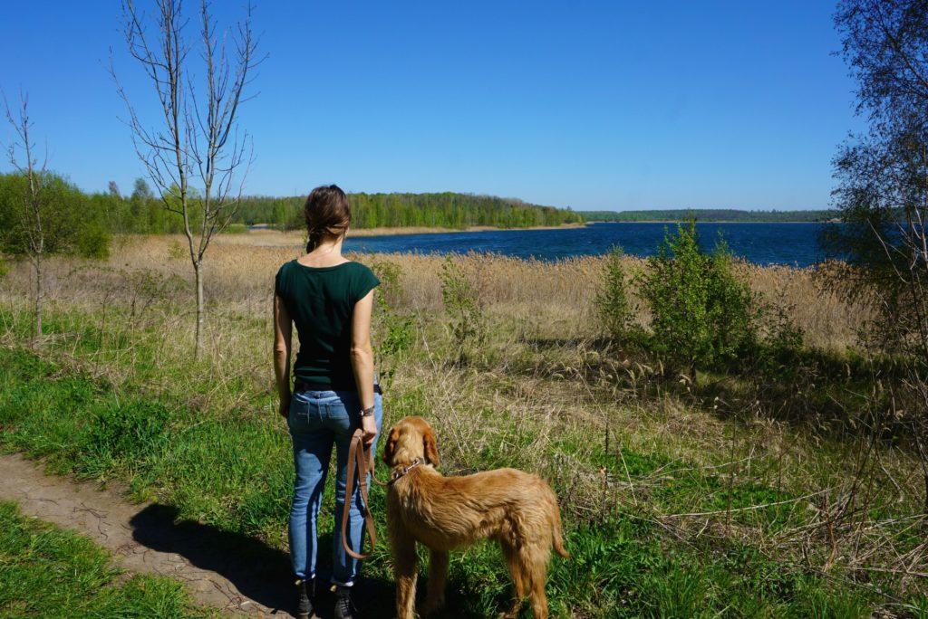 Wanderung um den Haselbacher See