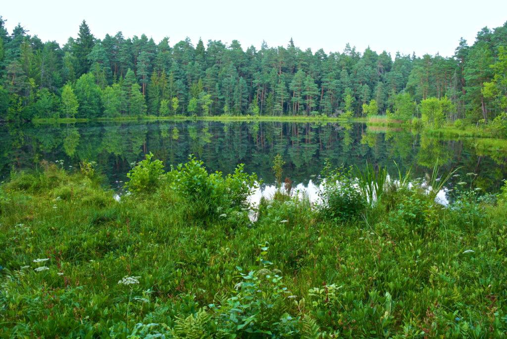 Rundwanderweg Wigry Nationalpark