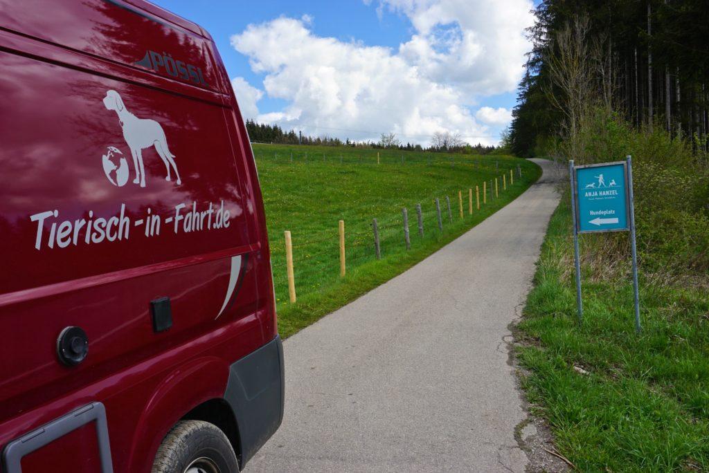 Feldweg zum Naturerlebnisgarten für Hunde