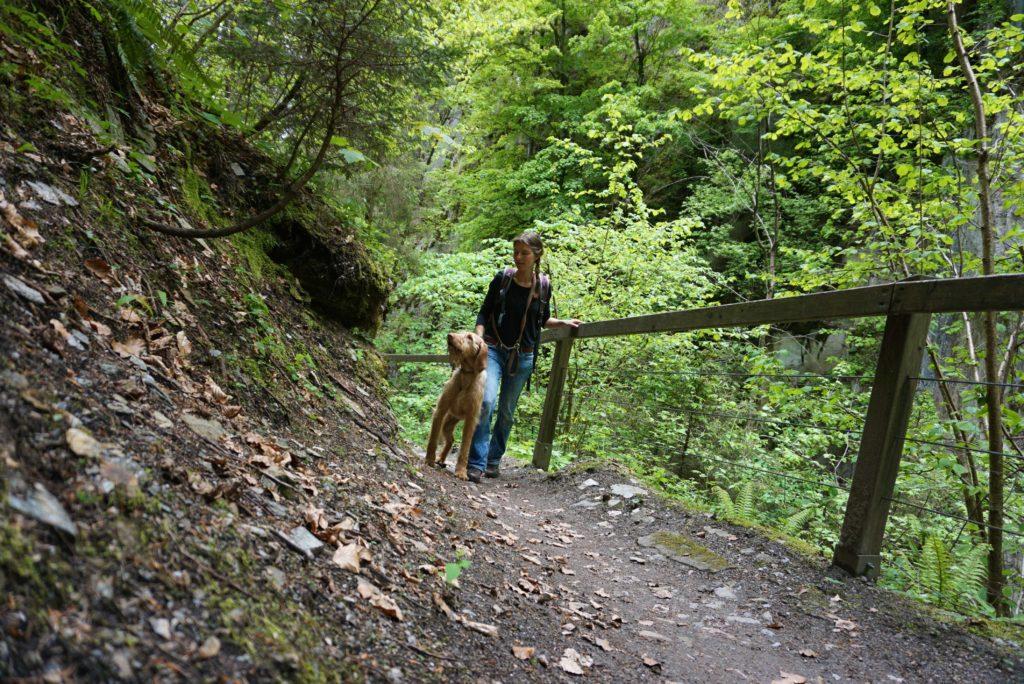 Schluchtenwandern mit Hund
