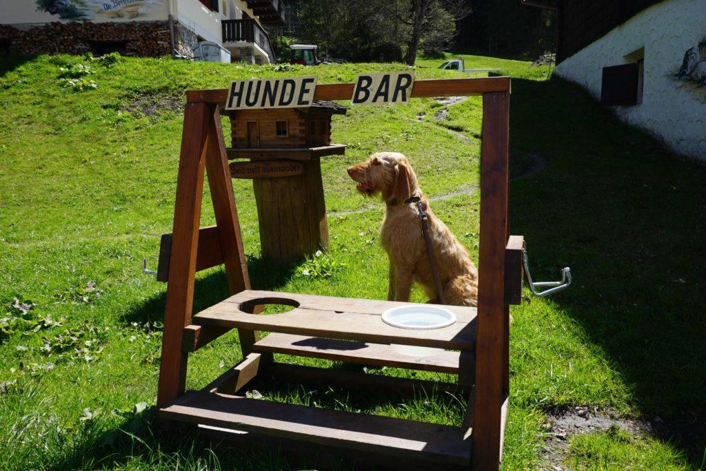 Hunde-Trinkstation Wildpark Ferleiten