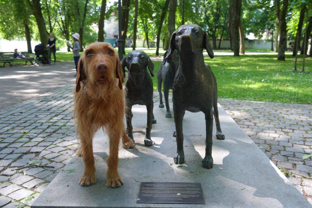 Hundestatue in Vilnius_tierisch-in-fahrt.de