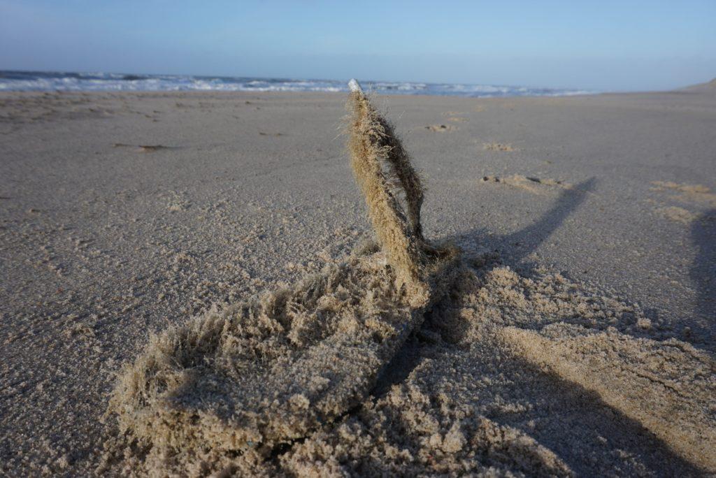 Strandfund Dänemark