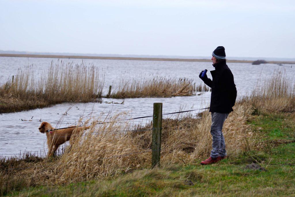 Vest Stadil Fjord - Naturerlebnis Dänemark_tierisch-in-fahrt.de