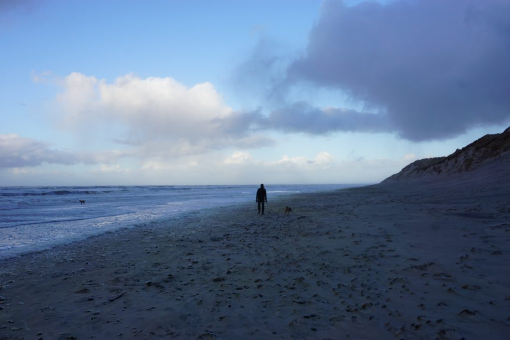 Winterstrand in Dänemark_tierisch-in-fahrt.de