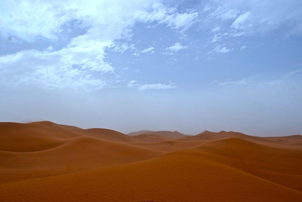 Sahara, Marokko_tierisch-in-fahrt.de