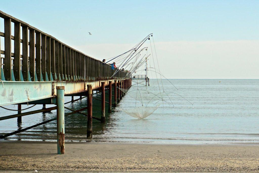Fischer auf Landungsbrücke_tierisch-in-fahrt.de