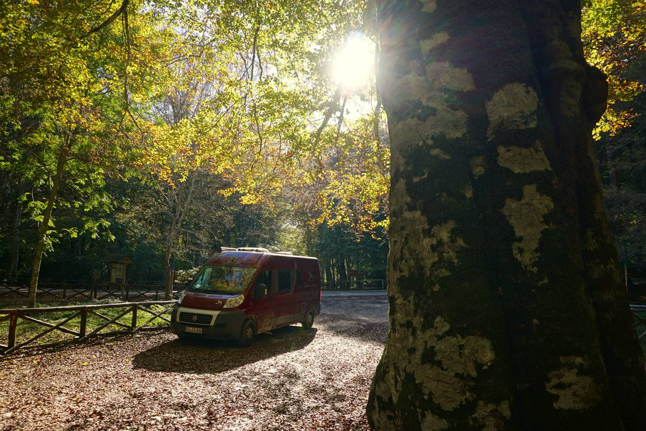 Mit dem Van in den Nationalpark Gargano_tierisch-in-fahrt.de