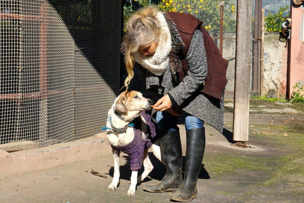 Hundeauffangstation Italien_tierisch-in-fahrt.de