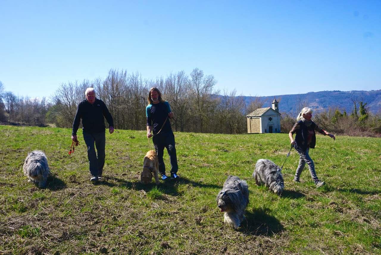Hundewanderung im Piemont_tierisch-in-fahrt.de