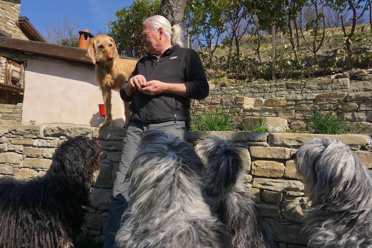 Hunde warten auf Futter_tierisch-in-fahrt.de